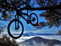 :-) Life is like a bicycle; in order to keep your balance you must keep moving