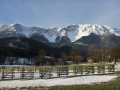 Schneeberg von Losenheim