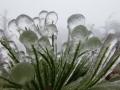 gefrierender Regen