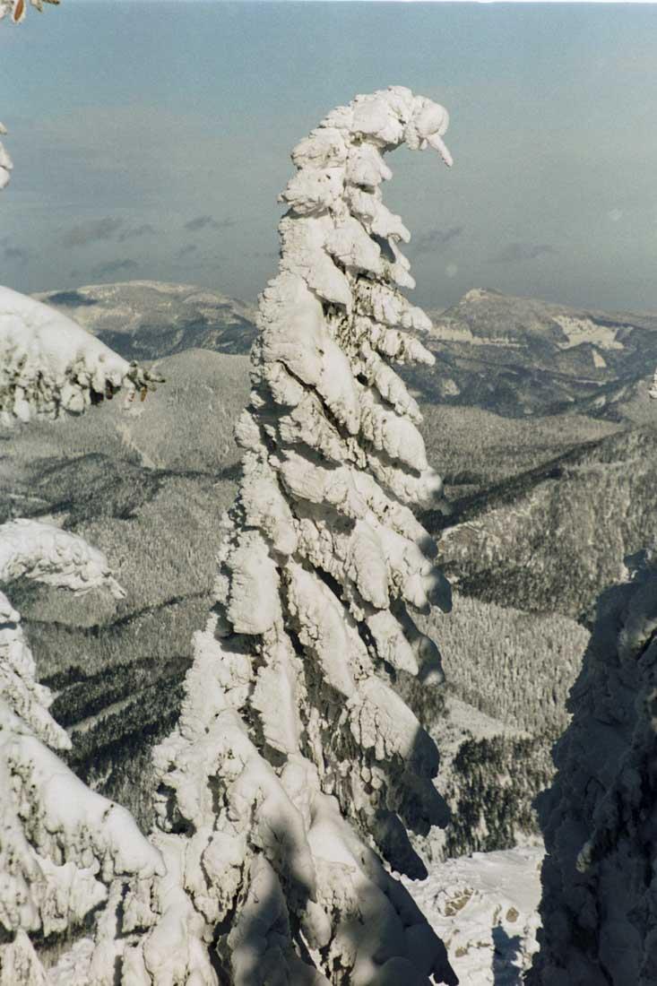 12.2001.obersberg.19-2